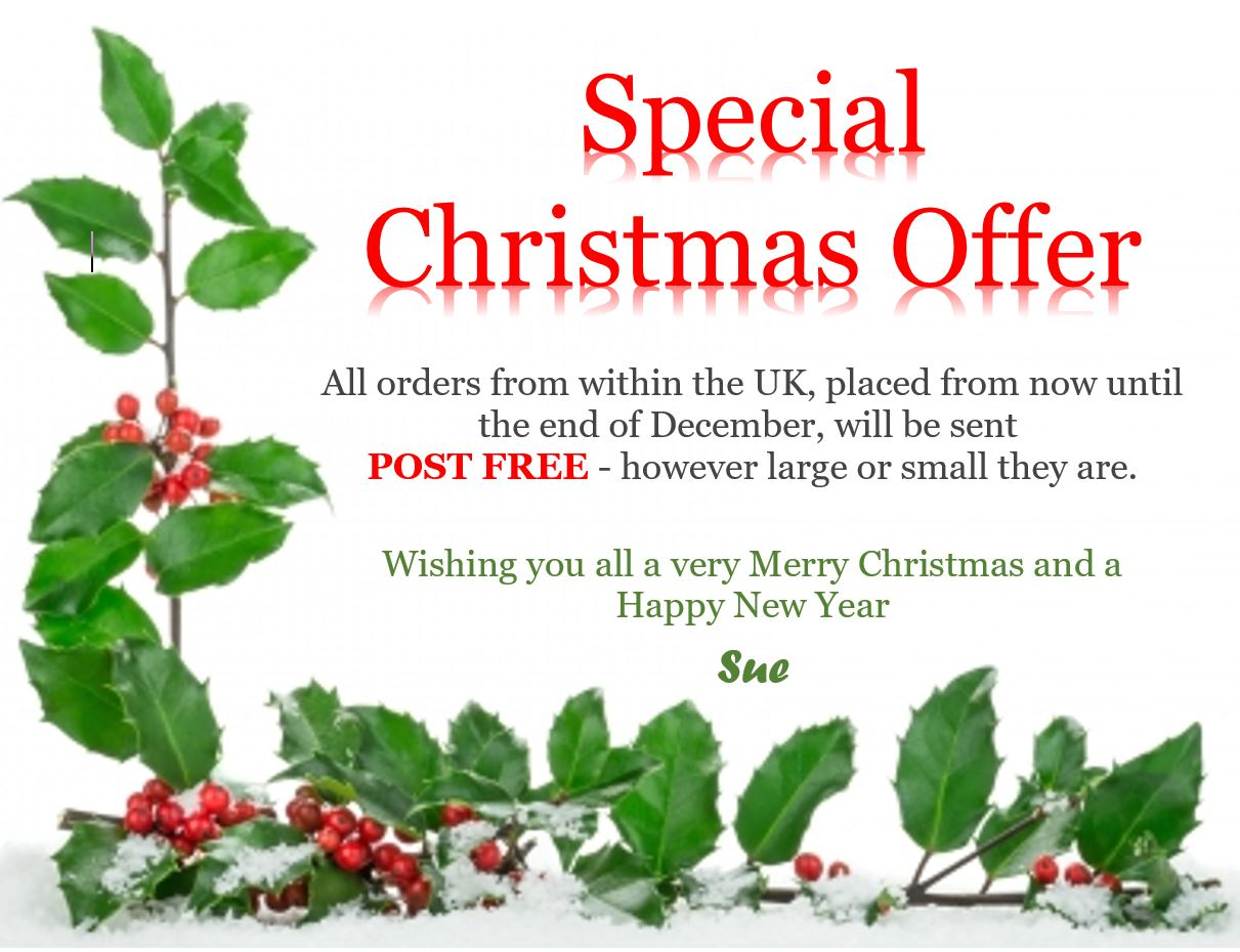 Christmas Free Postage Offer